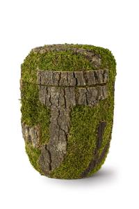 Bio Urne mit Baum-Optik und Moos
